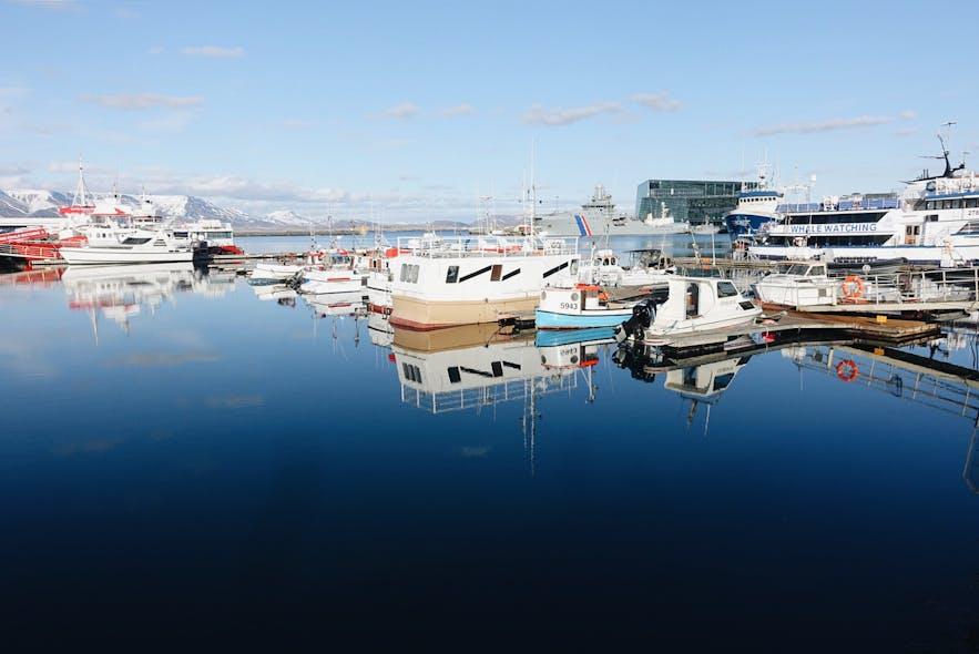 冰岛首都雷克雅未克旧港口