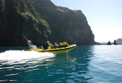 Vestmannaeyjar Transfer Flight & RIB Safari Boat Tour
