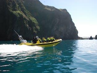 Vestmannaeyjar Transfer Flight & RIB Safari Boat Tour