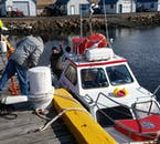Your small speedy vessel to Hrísey Island awaits you in North Iceland.