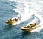 Schnellboote bringen dich den Inseln und Papageientauchern der Westmännerinseln ganz nah.