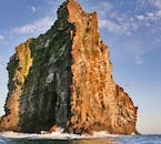 In the height of summer, the air of the Westman Islands can be thick with birds.