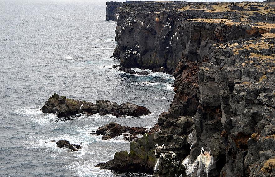 Svörtuloft cliff Snæfellsnes