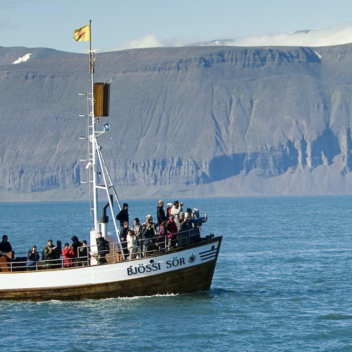 Originele walvisexcursie vanuit Húsavík | CO2-neutrale tour
