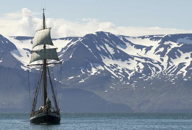 Whales & Sails at Husavik
