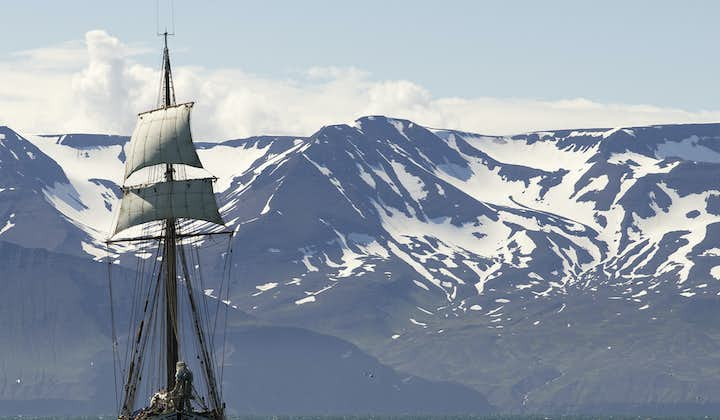 Although Iceland offers many Whale Watching tours, none feel quite as adventurous as those conducted on a traditional sail boat.