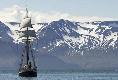 Walbeobachtung auf einem Segelschiff   ab Húsavík