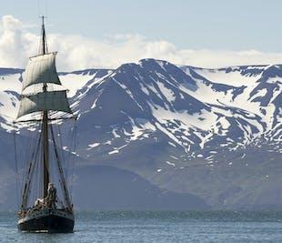 Walbeobachtung auf einem Segelschiff   ab Husavik