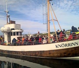 北アイスランドを巡る2泊3日のプライベートツアー