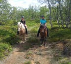 When riding an Icelandic horse through the local nature you are experiencing it in the same way as the first settlers of the country.