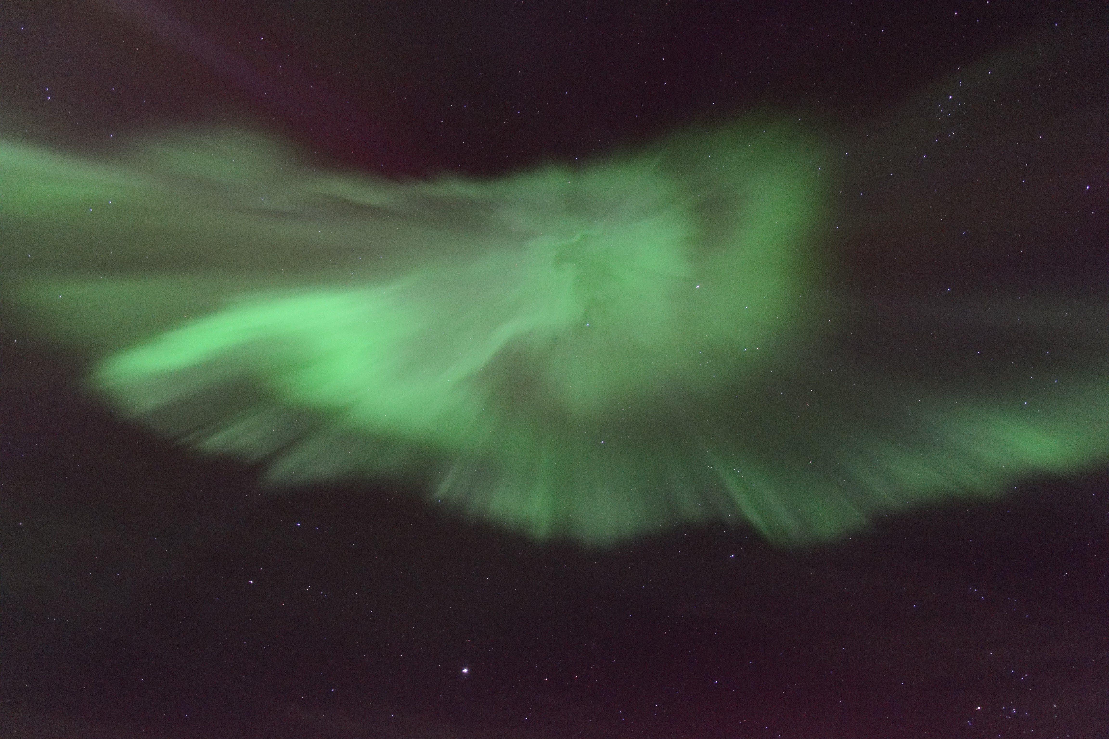 Sortie aurores boréales en yacht au large de Reykjavik