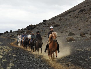Horse Riding Tour with the Blue Lagoon