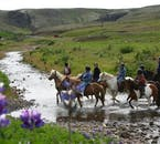 You will cross rivers in Mosfellsdalur on this riding trip upon an Icelandic horse.