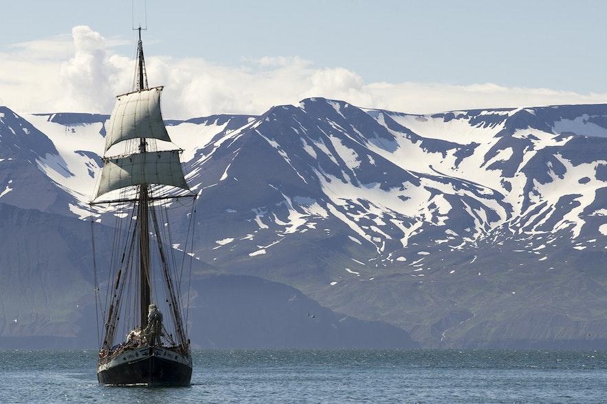 Whale watching with North Sailing schooner in Húsavík