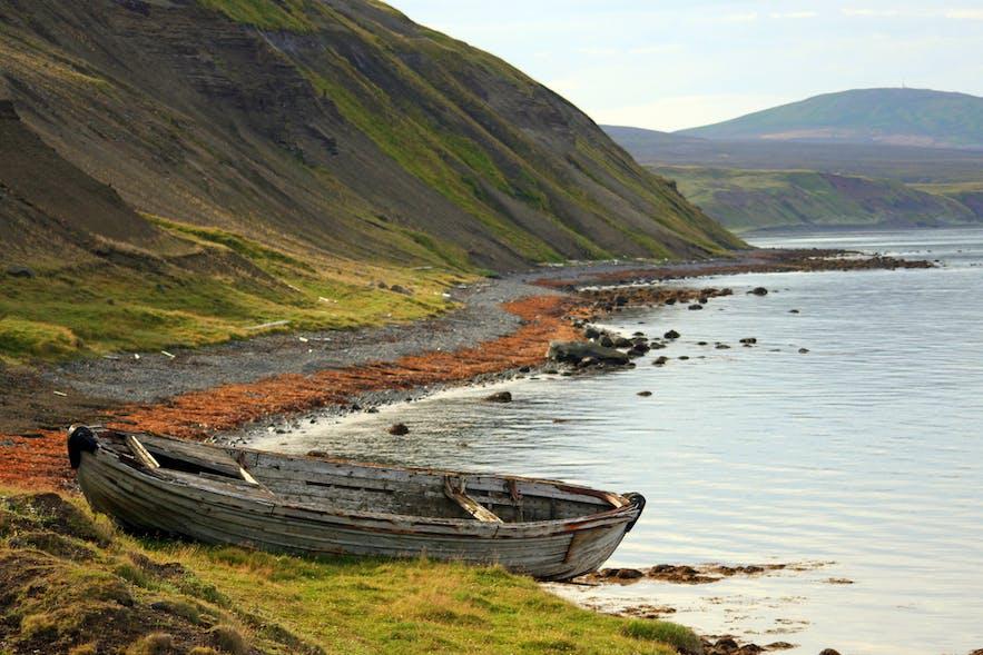Tungulending fossil beach in north Iceland