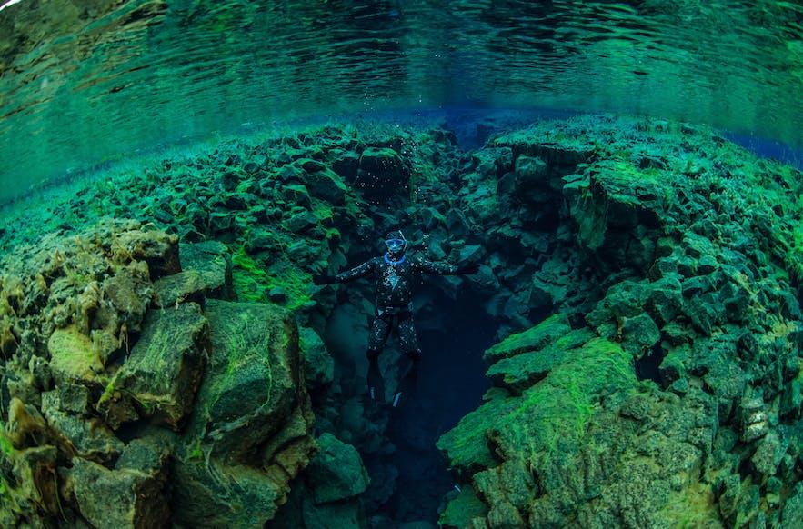 Odwiedzając Silfrę możesz wybrać nurkowanie lub snorkeling