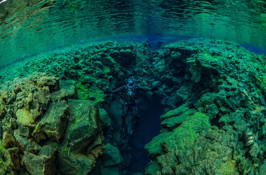 Visitors to SIlfra can choose between scuba, snorkelling and free diving.