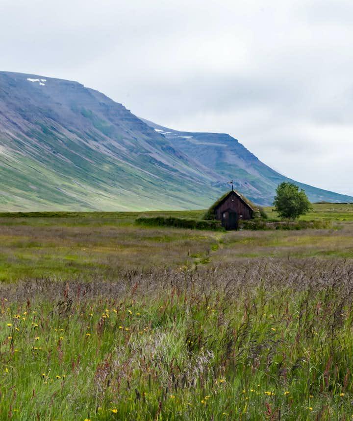 Day 5 of 3 week Iceland trip