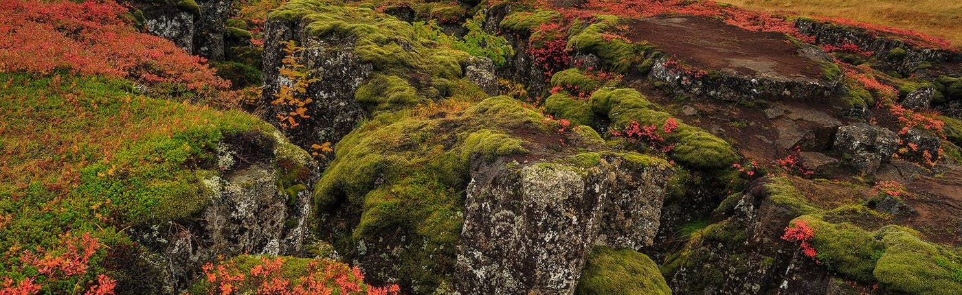 9 สถานที่ยอดฮิตบนวงกลมทองคำ |ไอซ์แลนด์
