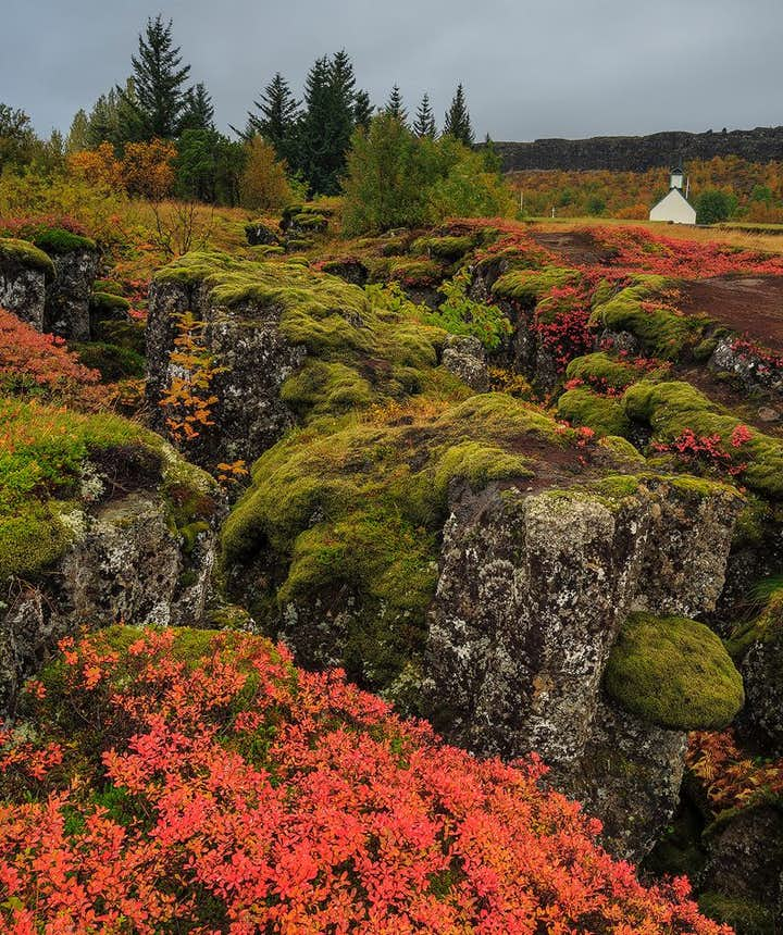 The Ultimate Guide and Top 9 Detours of Iceland's Golden Circle + COVID-19 Information