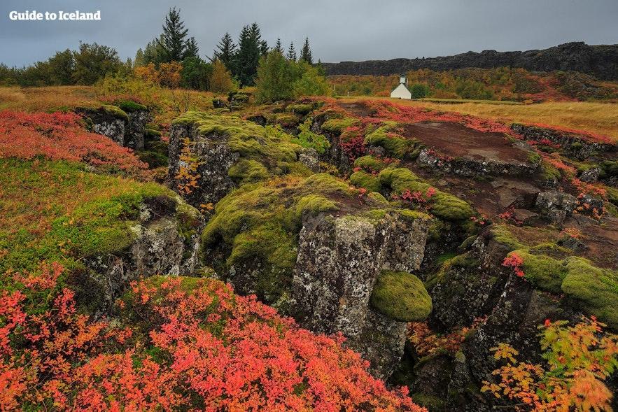 Þingvellir Nationalpark i løbet af efteråret i Island er et smukt sted.