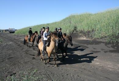 Horse Riding Tour on a Beach