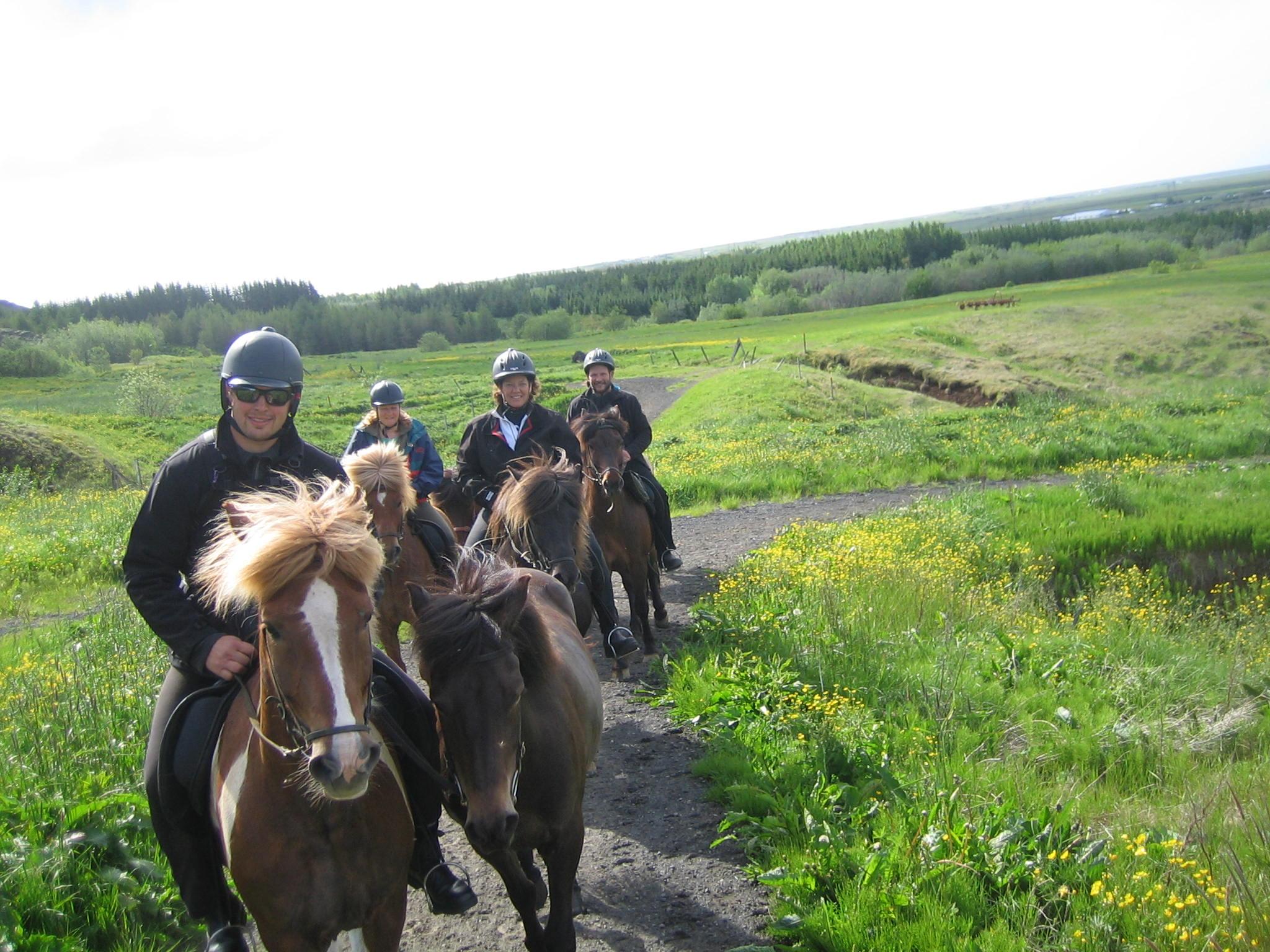 La balade à cheval en famille dans le sud de l'Islande offre une activité fun à faire dans la nature islandaise