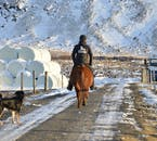 Certains disent que la nature islandaise est encore mieux à découvrir à dos de cheval