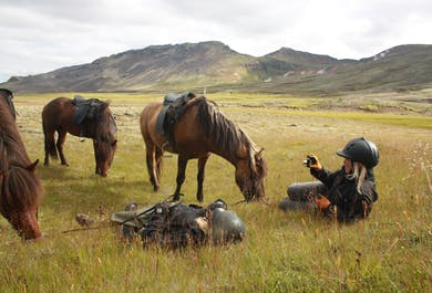 Horse Riding Day Tour in South Iceland