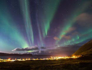Westfjords 2-Day Winter Break   With Flights from Reykjavik
