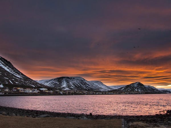 Westfjords Adventures