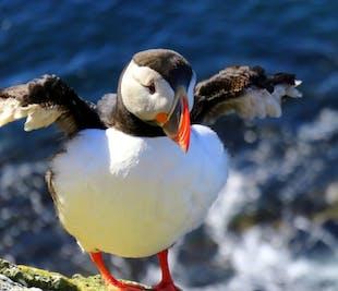 2-dniowa wycieczka na Fiordy Zachodnie| Lot z Reykjaviku