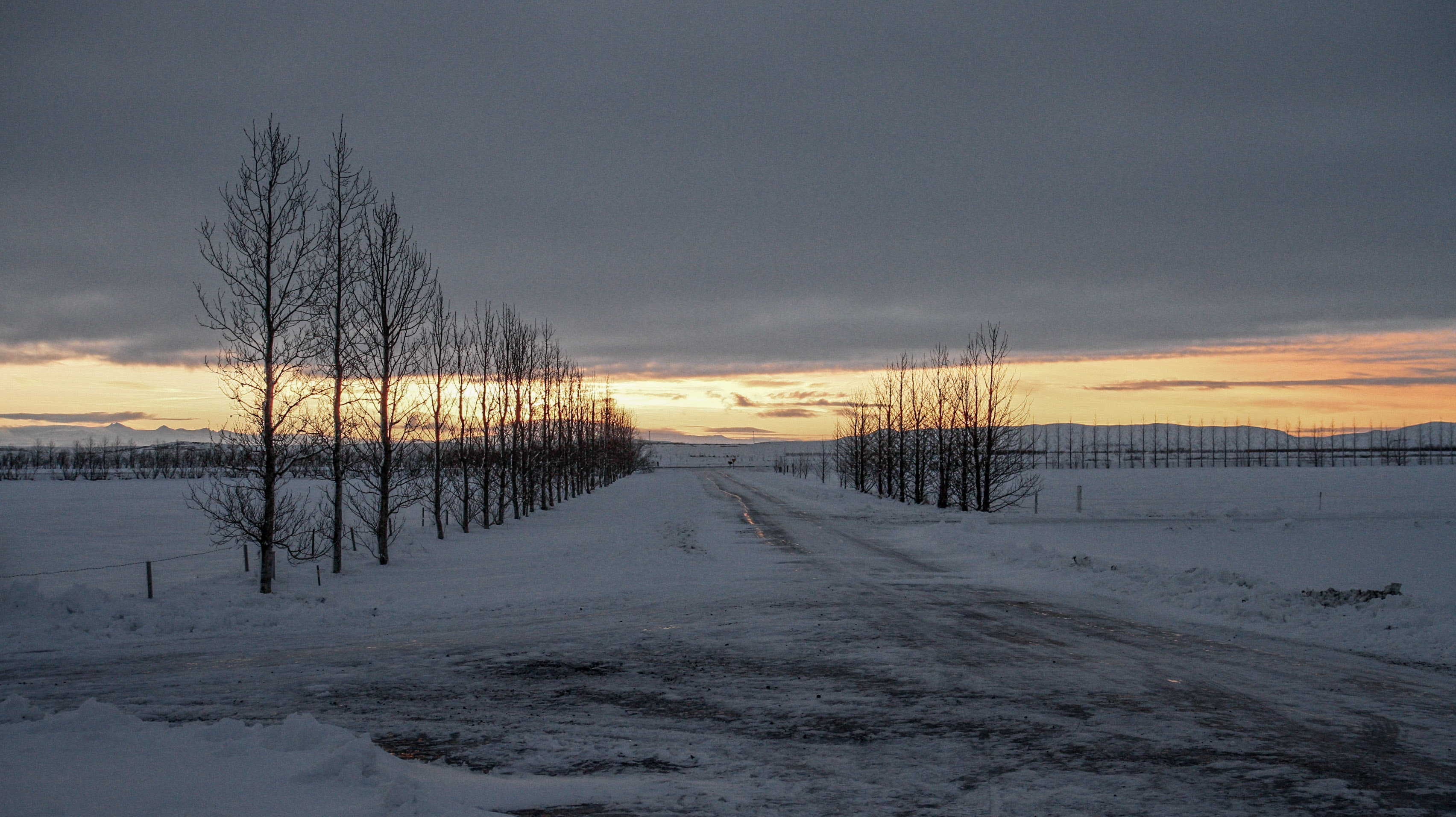 Icy roads in Iceland in January