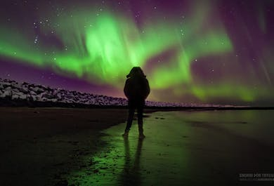 Local Beers & Northern Lights from Reykjavik   Audio Guided in 10 Languages