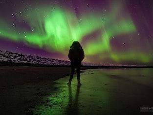 Ultimate Reykjavik night | Local beers & Northern Lights