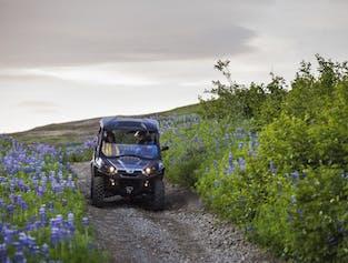 Reykjavik Buggy Safari | One Hour Journey Up Hafrafell