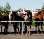 この乗馬ツアーは7歳から参加できる初心者向けのツアー