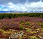 The openness and diversity of Iceland's landscape feels like a compelling invitation to the passionate mountain biker.