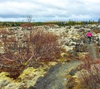 You will pass a wealth of scenery on your mountain biking adventure.