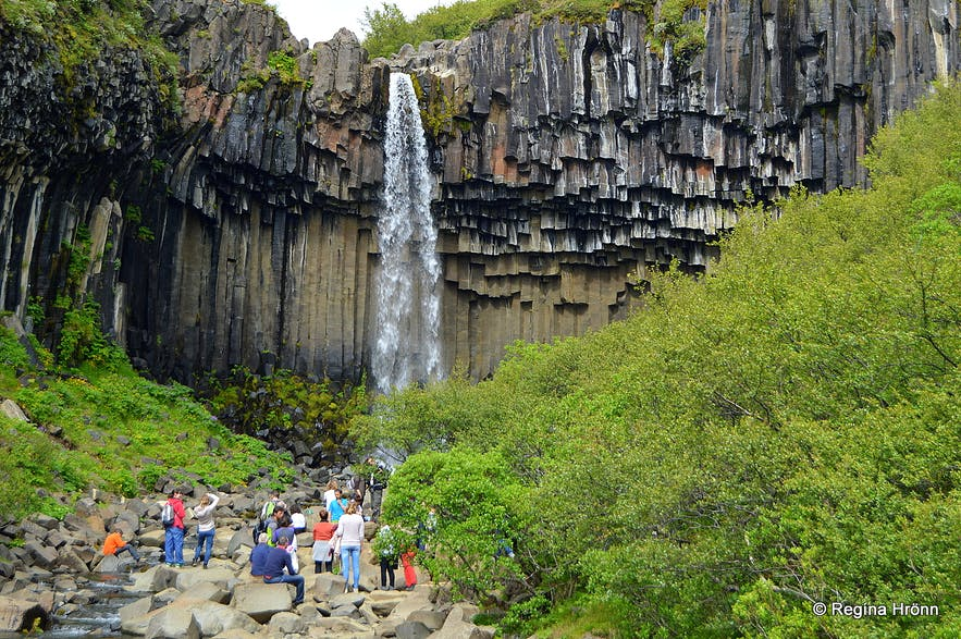 Svartifoss & other beautiful Attractions in Skaftafell in South-Iceland