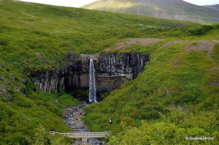Svartifoss waterfall in Skaftafell, south Iceland