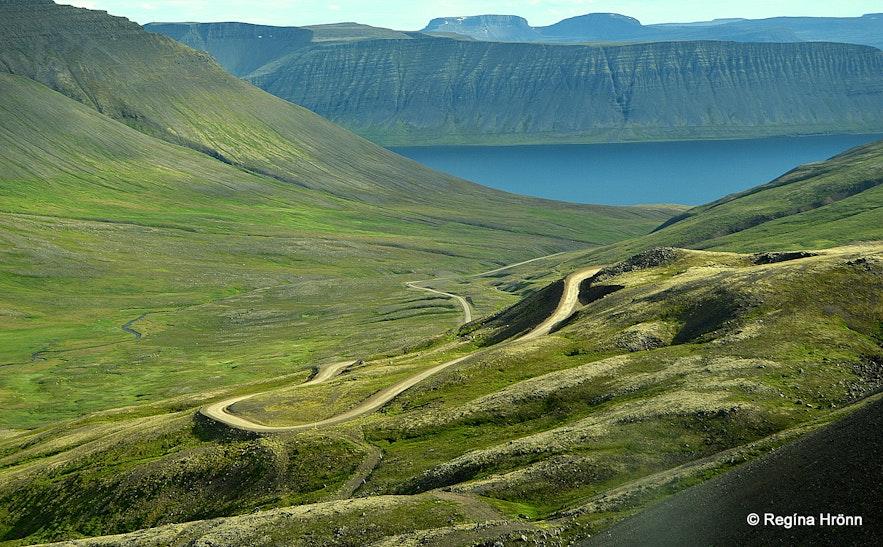 Hrafnseyrarheiði heath Westfjords of Iceland