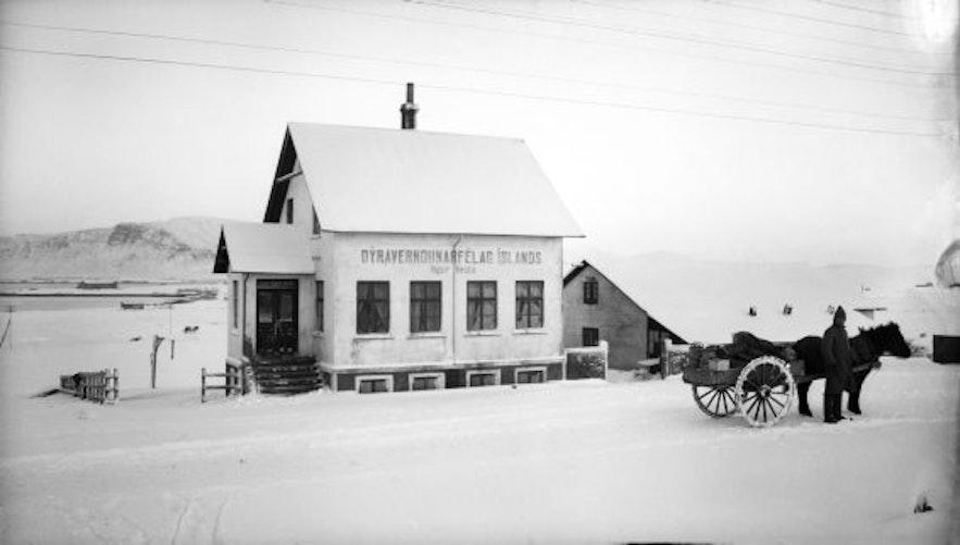 레이캬비크 사진 박물관에 전시된 역사적 사건을 담은 흑백 사진