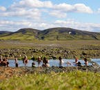 The Strútur trail in the Highlands of Iceland has hot springs you can bask in.
