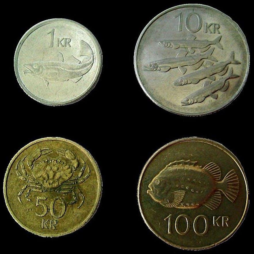 Icelandic Krona coins.