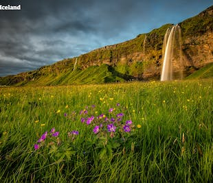9 Day summer package   The Best of Iceland with a Day in Greenland