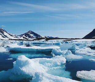 アイスランドのサマーパッケージ7泊8日|グリーンランド日帰りツアー付き