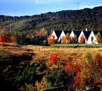 Þingvellir is full of colour throughout summer.