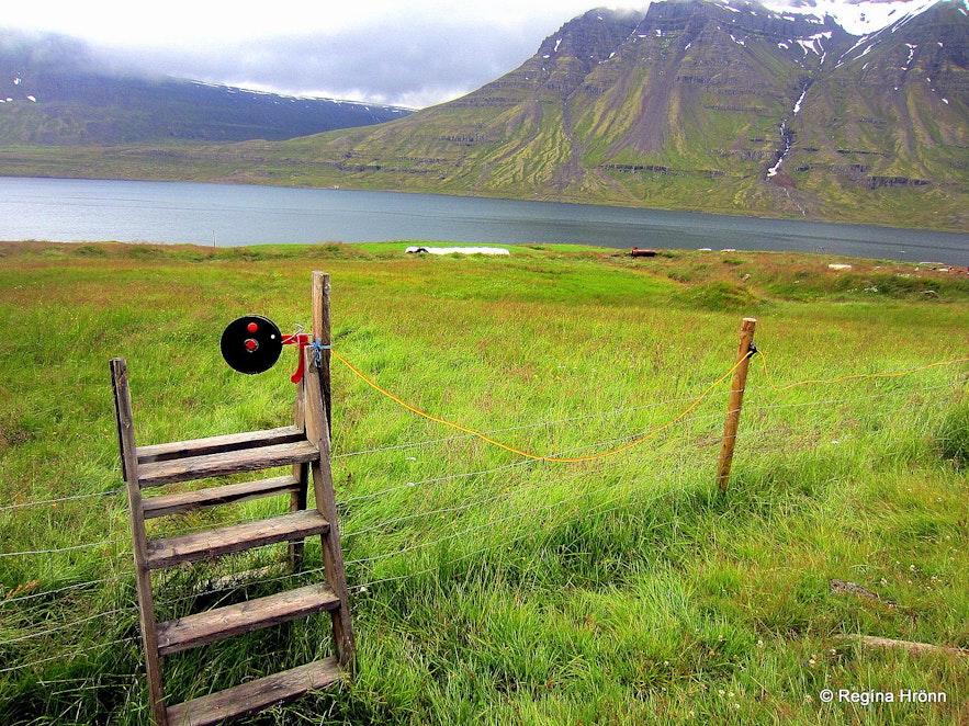 Stiles on the path leading to Dvergasteinn
