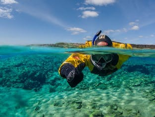 Small Group Silfra Snorkelling Adventure from Thingvellir
